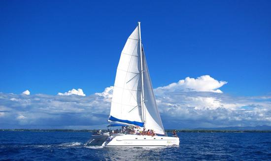 外观 帆船外观及色调