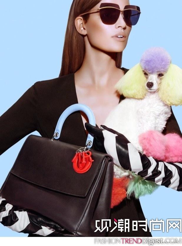 Dior 2014秋冬系列包袋广告高清图片