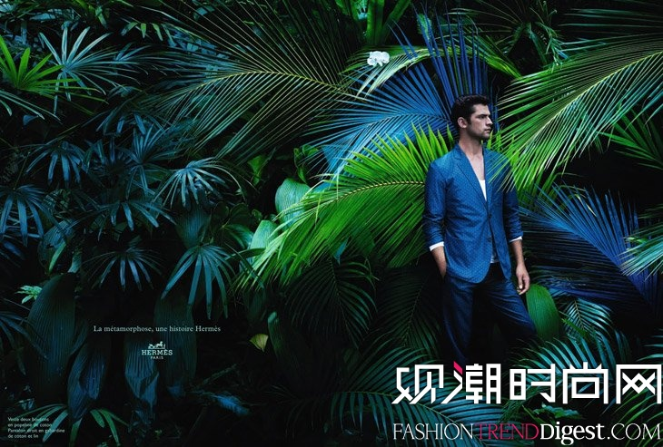 Sean O'Pry出演Hermes2014春夏广告高清图片