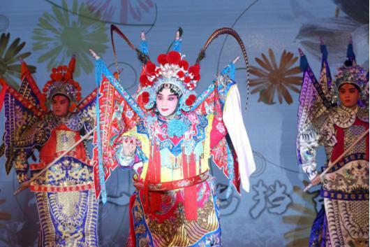 苏宁妙使传统文化回春术 佛山黎家定制款狮头现身