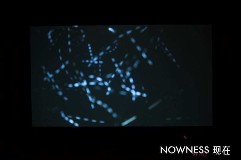NOWNESS EXPERI...