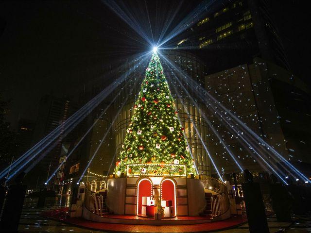 绮丽冬日 寻梦圣诞 卡地亚与你相约 点亮浪漫圣诞季
